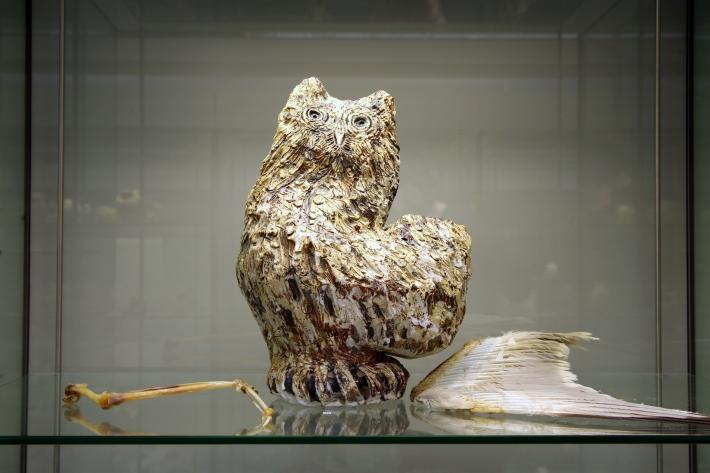 John Clarke Owl
